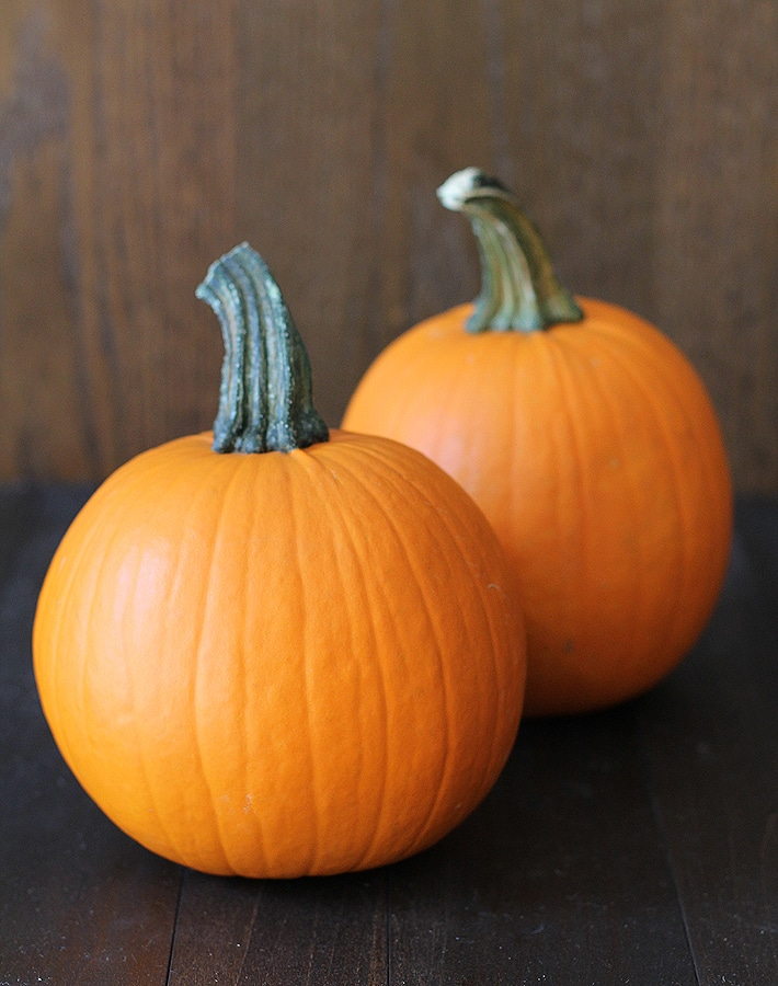 These are the sugar/pie pumpkins you will need if you want to learn How to Make Homemade Pumpkin Puree yourself.