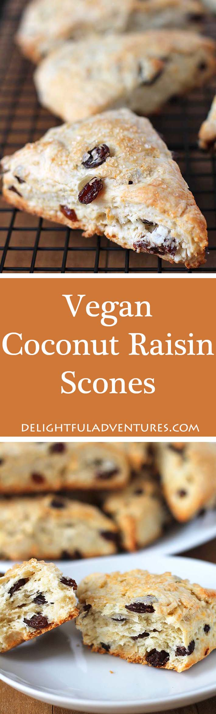 These Coconut Raisin Vegan Scones have the perfect texture and are wonderful to enjoy with tea. They're also ideal for serving at breakfast or brunch.