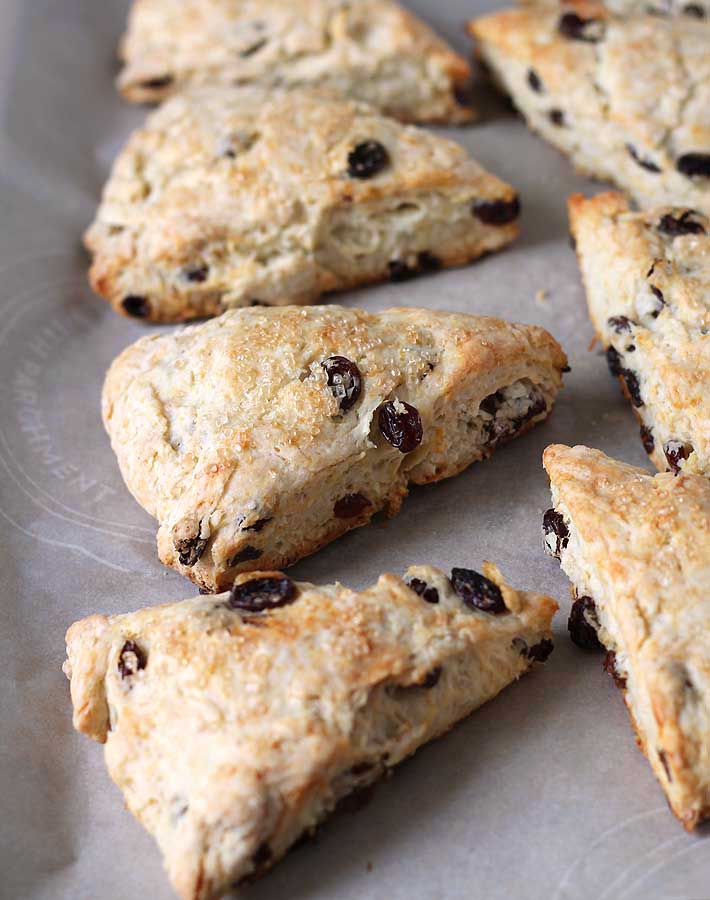 Coconut Raisin Vegan Scones sitting on a parchment paper lined baking sheet.