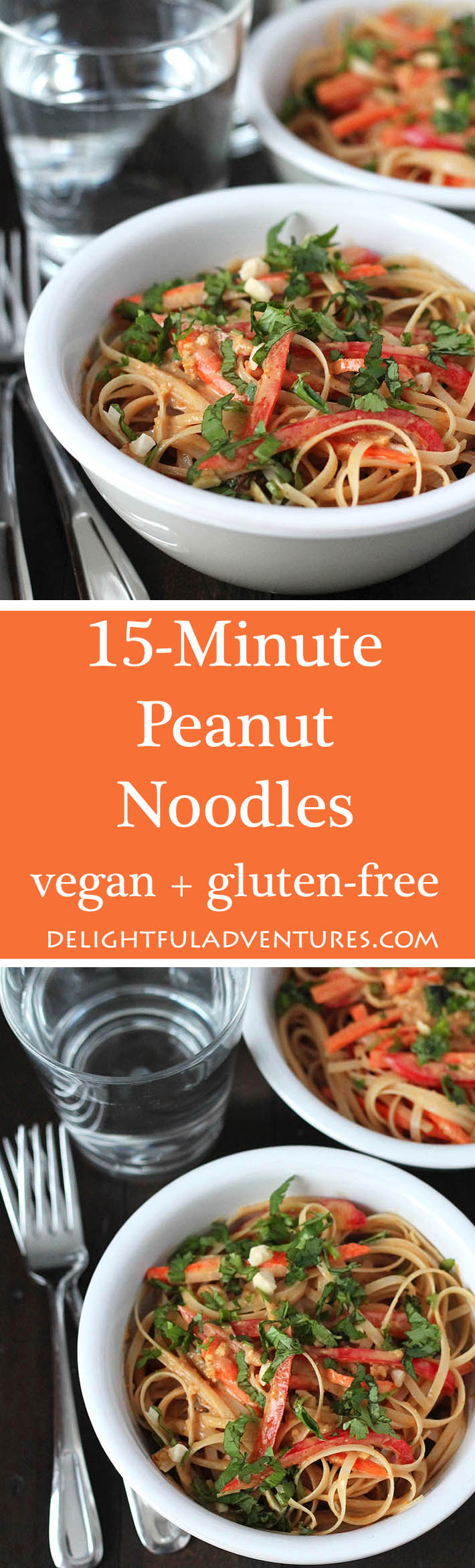 This 15 minute vegan peanut noodles recipe from the book,