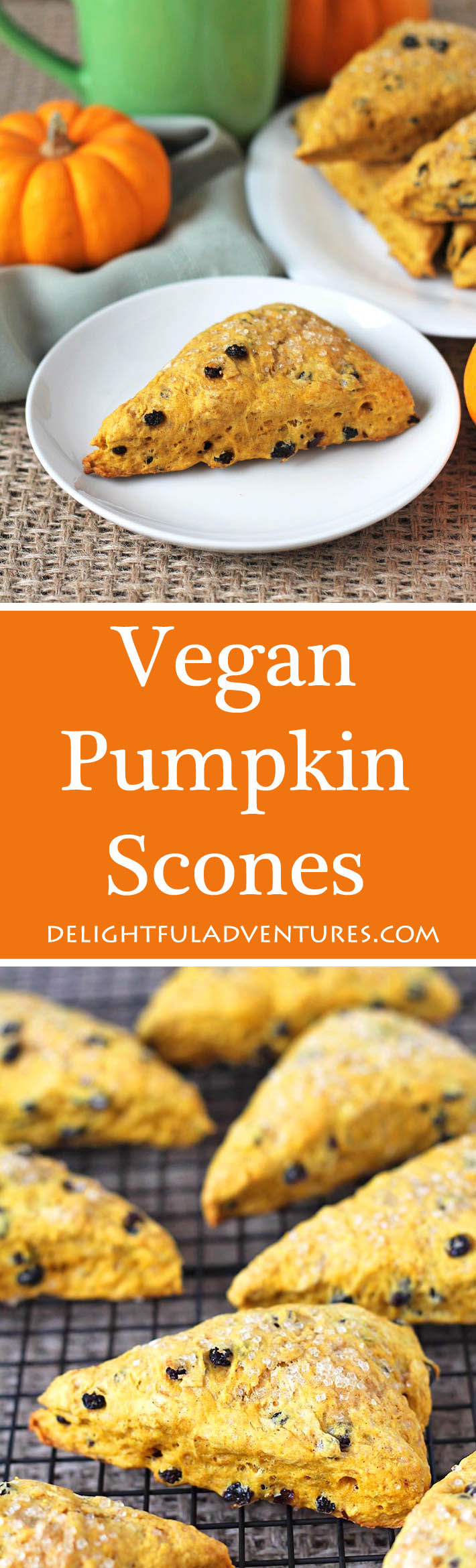 These perfectly spiced and not-too-sweet vegan pumpkin scones will become a new fall (or any time of year!) favourite. They are perfect to have with tea! #veganscones #pumpkinscones #pumpkinspice #vegantreats, #vegandessert
