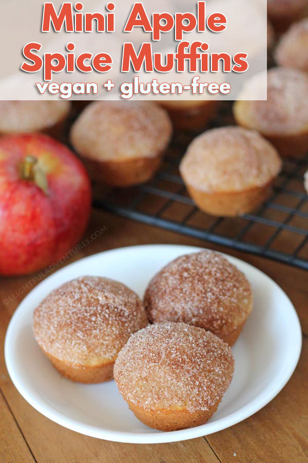 Filled with diced apples and warm fall spices, these mini easy vegan apple muffins are great for your kids' school snacks or for snacking on at home!They also happen to be gluten-free!
