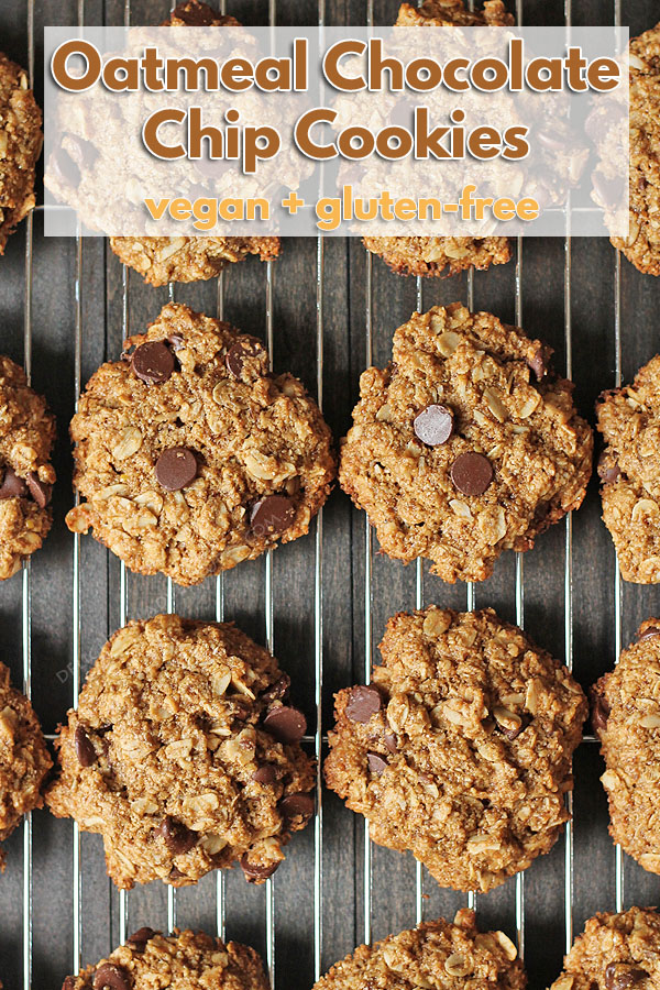 These soft, Vegan Oatmeal Chocolate Chip Cookies with coconut will satisfy your sweet cravings. They also happen to be gluten-free! Try to eat just one...bet you can't! #delightfuladventures #vegancookies #glutenfreecookies #veganoatmealcookies #vegan #oatmealchocolatechip