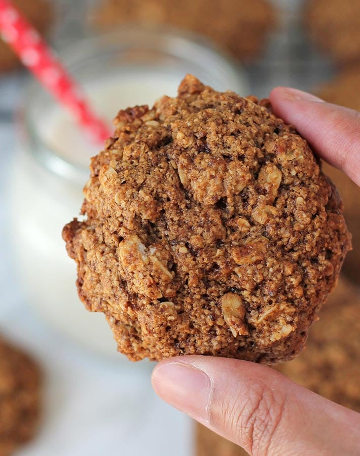 A hand holding a Vegan Gluten Free Oatmeal Cookie to give a closeup view.