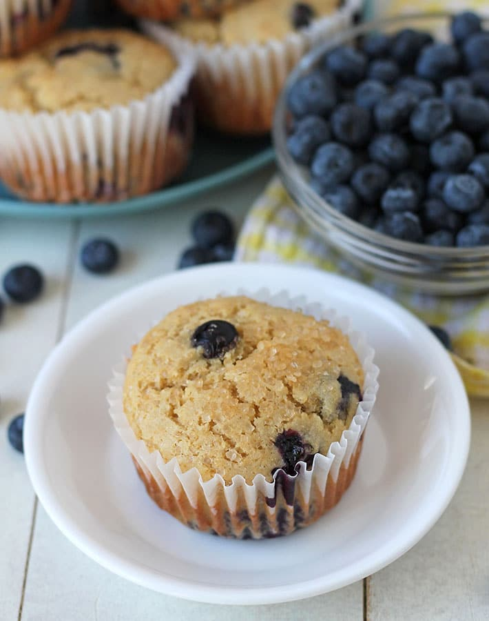 A gluten free blueberry muffin on a small white plate.