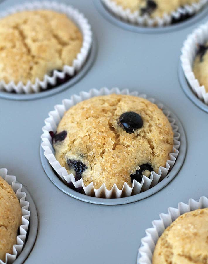 Vegan Gluten Free Blueberry Muffins just out of the oven in a muffin pan.