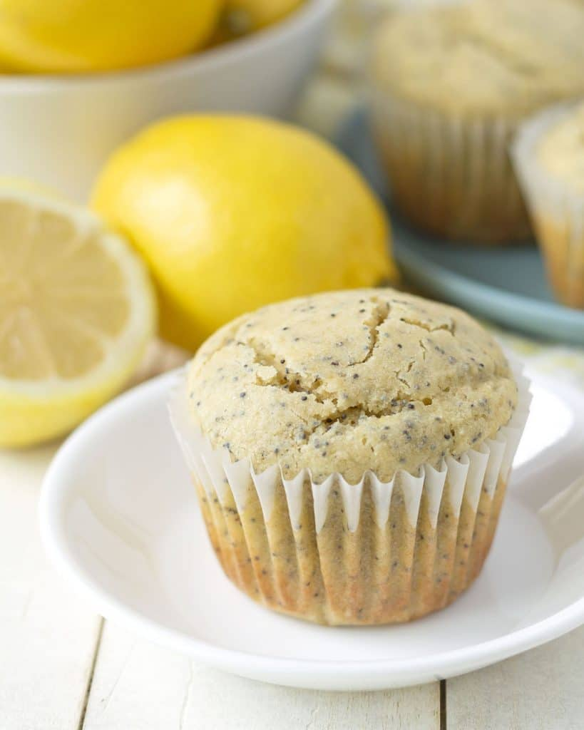 A muffin sitting on a small white plate.