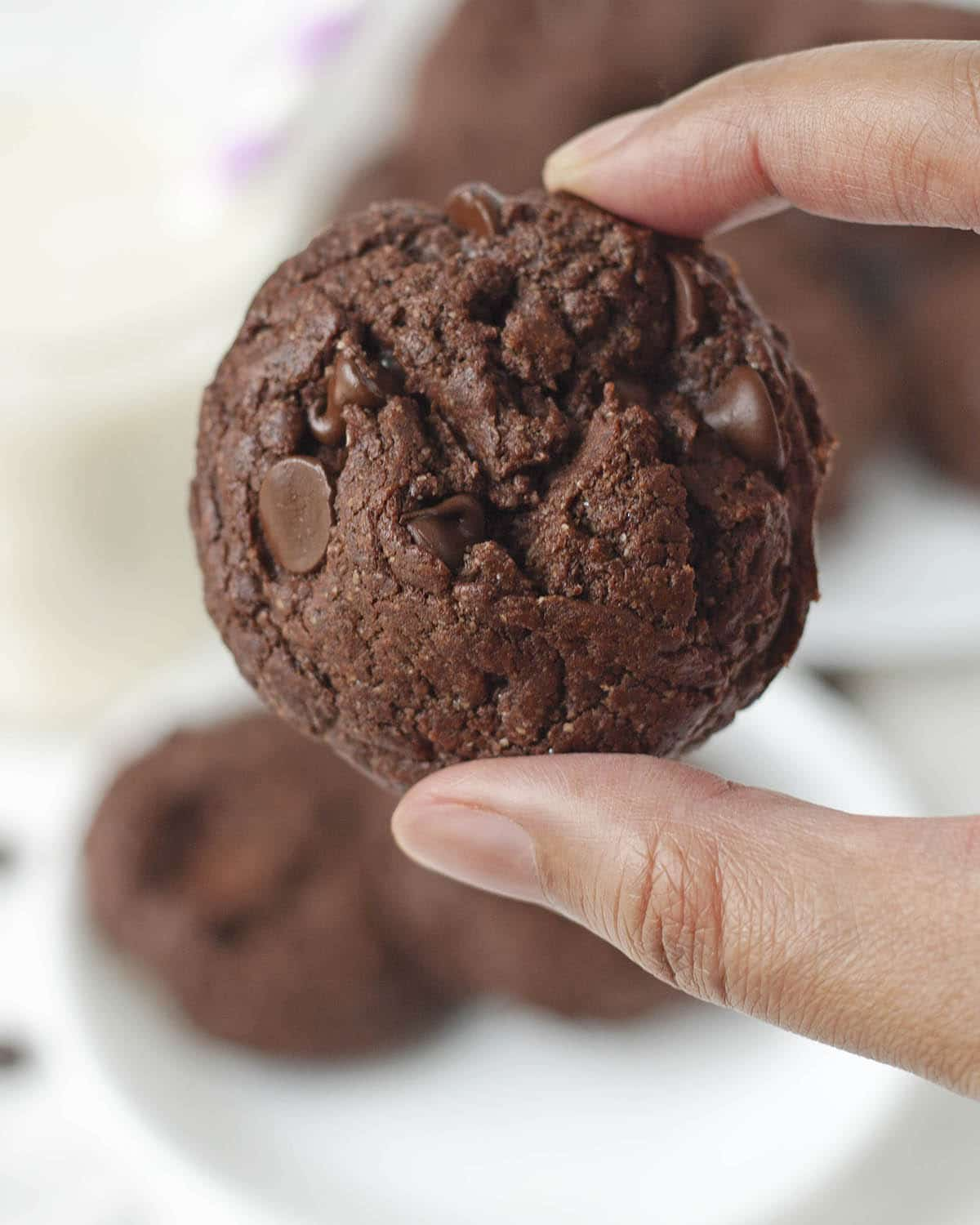 Image shows a hand holding a chocolate cookie close up to the camera.