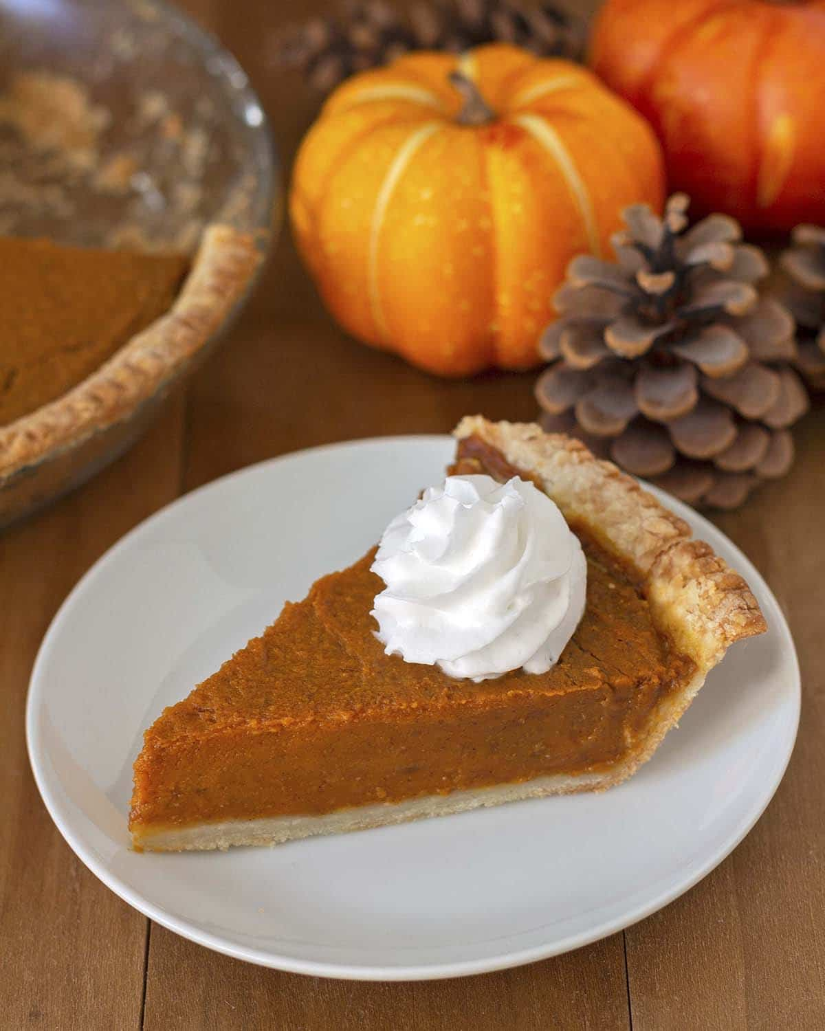 A slice of egg free pumpkin pie on a white plate, pie is topped with coconut whipped cream.