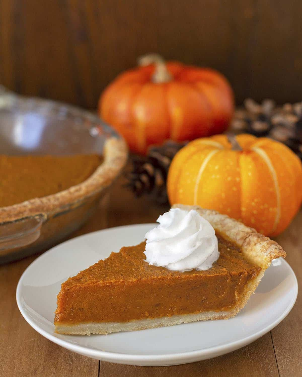 A slice of dairy and egg free pumpkin pie on a plate, the pie slice is topped with dairy-free whipped cream.