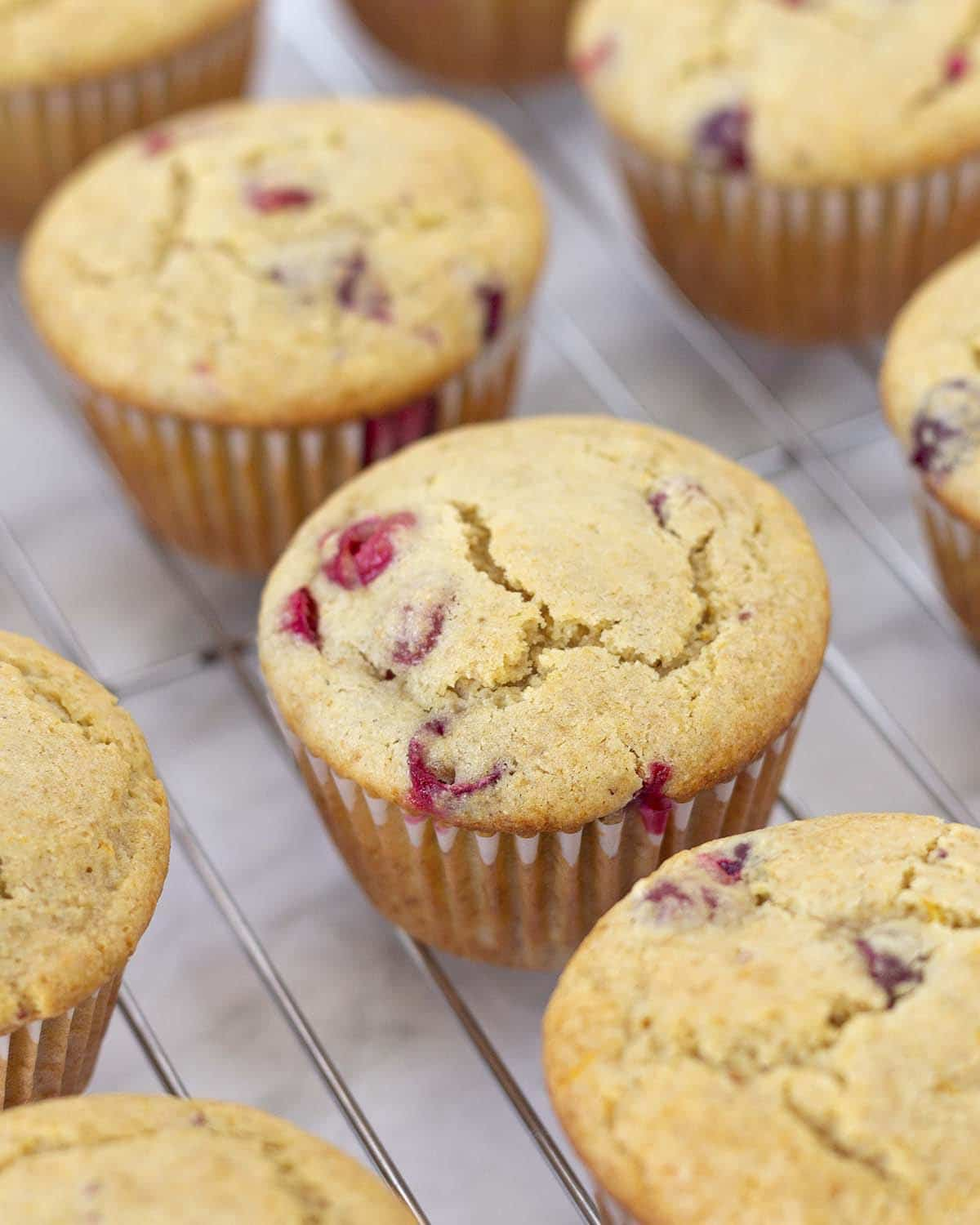 Several fresh baked dairy free orange cranberry muffins on a cooling rack.