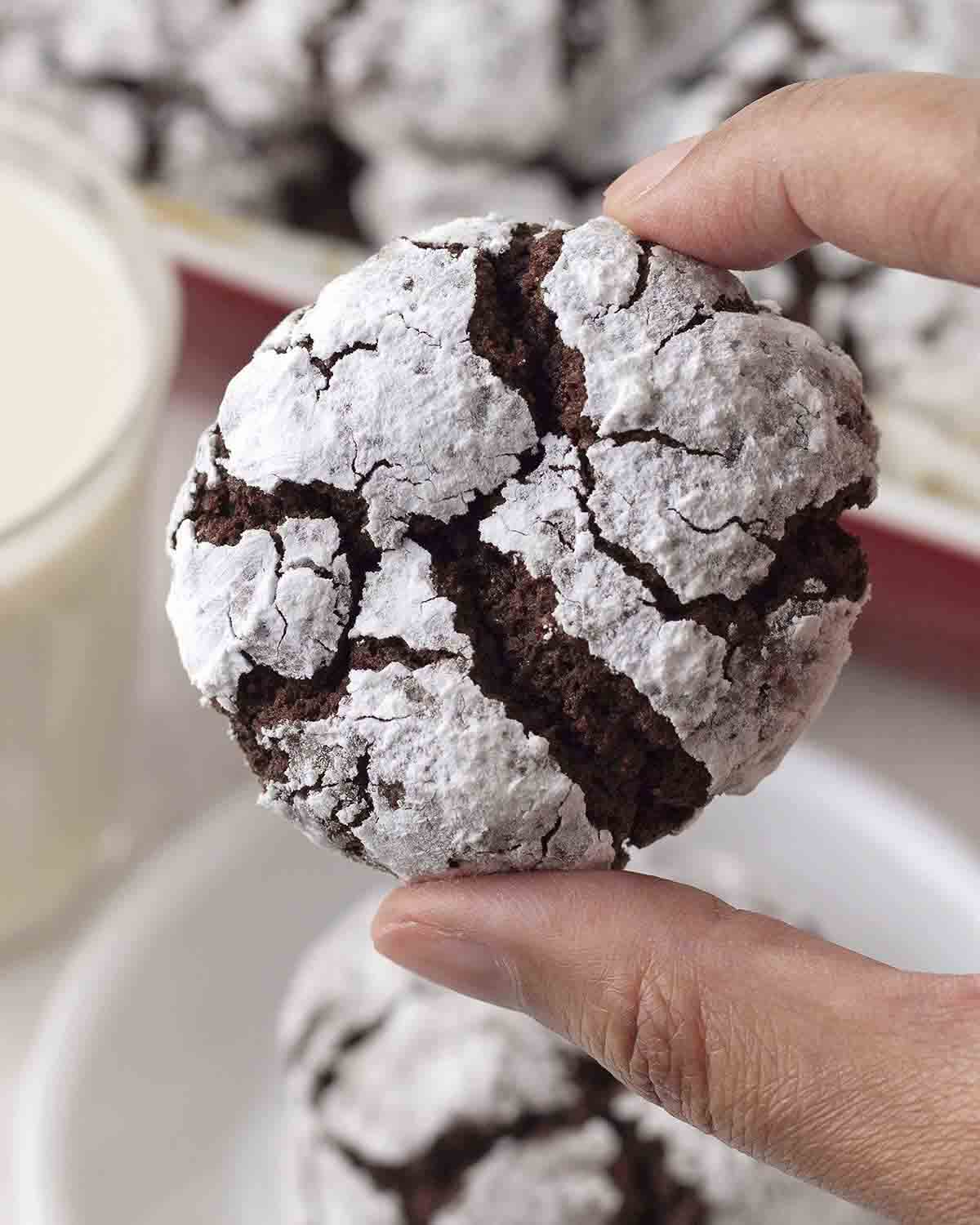 A hand holding up a holiday chocolate crinkle cookie to show the crackly textured top.