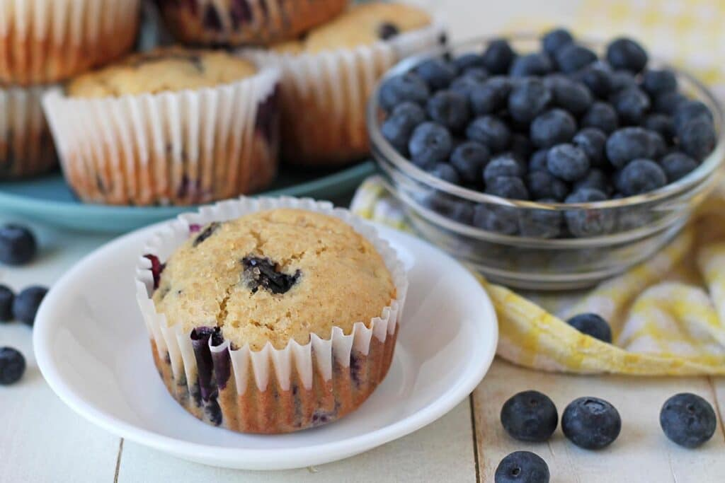 Close up shot of a vegan gluten free blueberry muffin on a white plate.