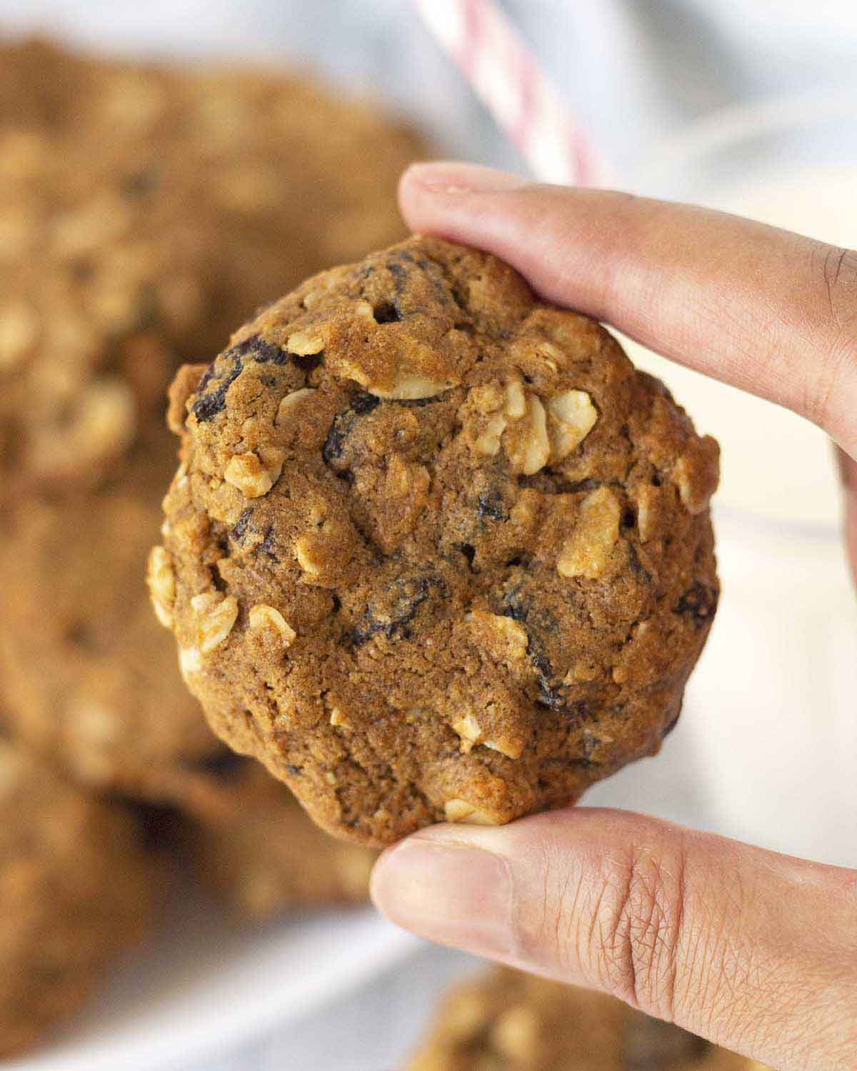 Image shows a hand holding up a soft plant-based oatmeal raisin cookie.